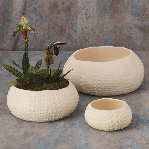 Ceramic Urchin Bowl-Matte White