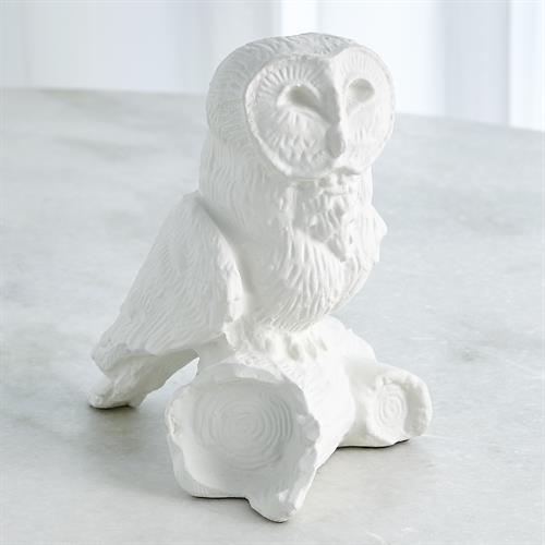 Owl On Branch-Matte White