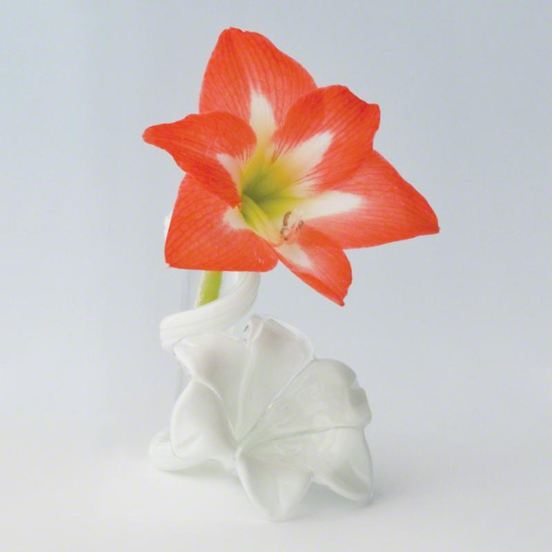 Star Lily Bud Vase