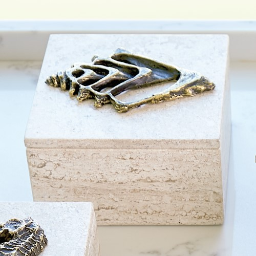 Bronze Conch Fossil Travertine Box