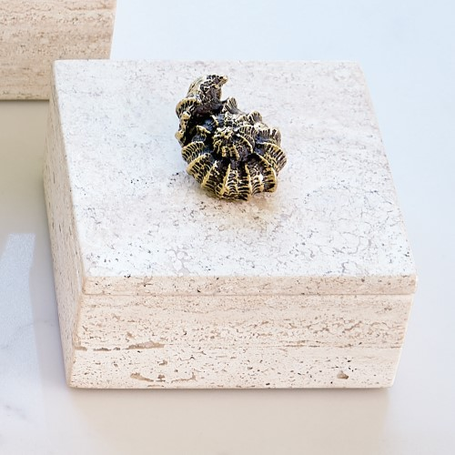 Bronze Snail Travertine Box
