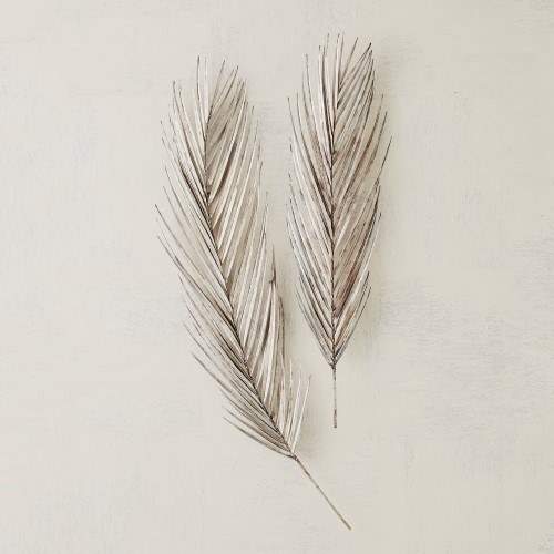 Palm Leaf-Antique Nickel